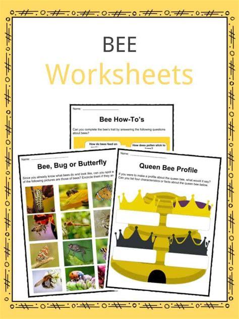 bee facts worksheets habitat life span information