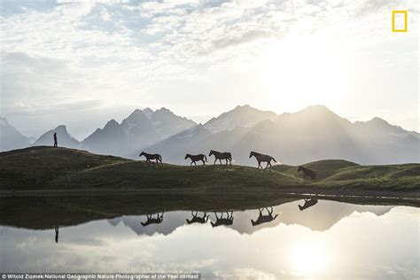 National Geographic Nature Photographer of the Year reveal ...