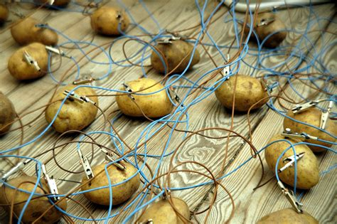 can you charge your phone with a potato potatoes can be used to charge your gadgets