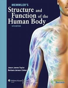 Books - Anatomy  U0026 Physiology