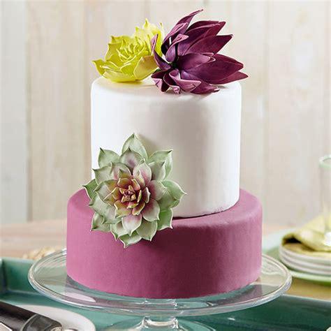 succulents trio cake wilton