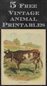 Vintage Animal Printables - House of Hawthornes