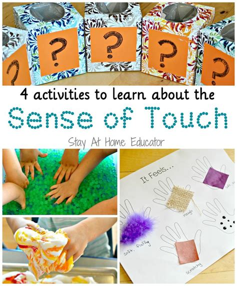 160 best images about 5 senses on preschool 417 | b016f7f4df15ebe65f68d79afeefe0dc