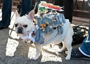 16 Amazing Costumes From the Tompkins Square Park ...