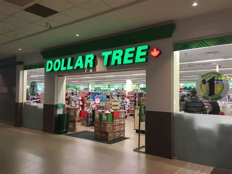 Dollar Tree  Discounter  3711900 Haney Place, Maple