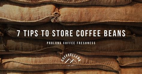It's ideal to understand how to properly store coffee beans, whether you should consider the why do we need to store coffee beans? 7 Tips on How to Store Coffee Beans After Roasting?