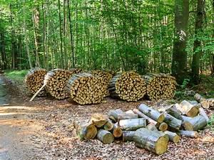 1 Tonne Holzbriketts Entspricht Wieviel Ster Holz : hfplus gmbh faq 39 s ~ Frokenaadalensverden.com Haus und Dekorationen