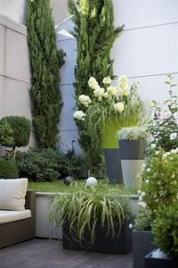les 25 meilleures idees de la categorie buis sur pinterest With idee amenagement jardin de ville 12 les 25 meilleures idees de la categorie escalier exterieur