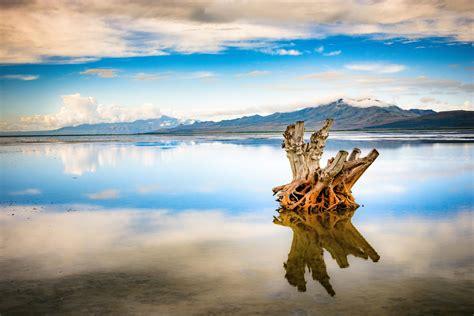 Salt Lake Boat Show by A Lone Tree Stump In The Great Salt Lake Utah Oc