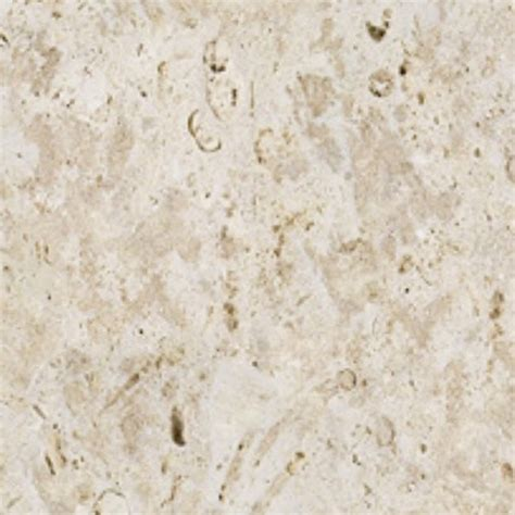 coral tile coralstone surface texture seamless 08616