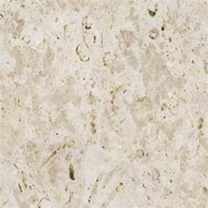 Coralstone surface texture seamless 08616