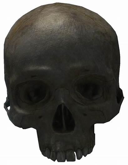 Skull Halo Halopedia Reach