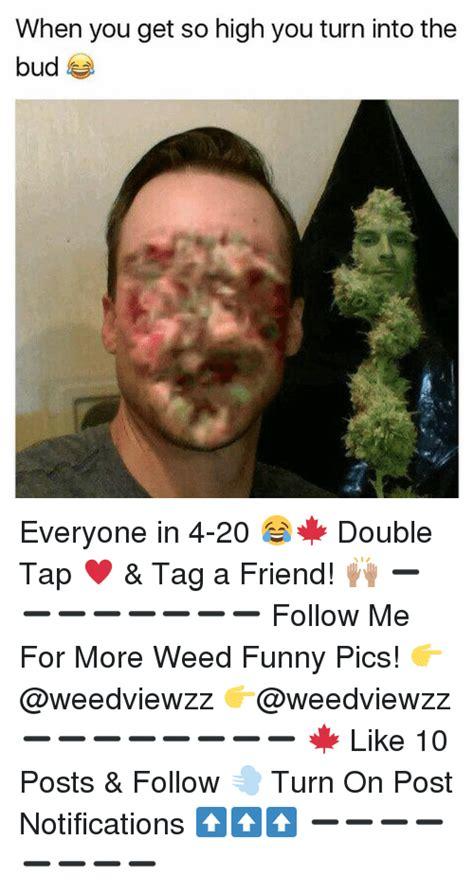 25 best memes about pics pics memes