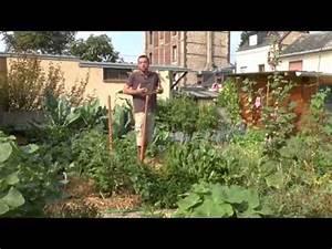 Rever De Jardin : un jardin de permaculture qui fait r ver jardindescentgardes ~ Carolinahurricanesstore.com Idées de Décoration