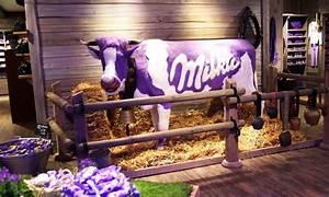 Baby Markt München : milka welt wertgutschein milka welt groupon ~ Watch28wear.com Haus und Dekorationen