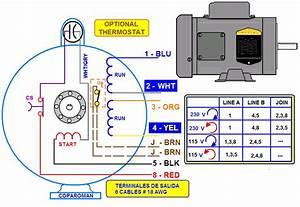Coparoman  Diagramas De Motores El U00e9ctricos Monof U00e1sicos