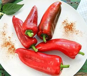 Paprika Pflanzen Pflege : paprika 39 bullhorn 39 rot dehner garten center ~ Markanthonyermac.com Haus und Dekorationen