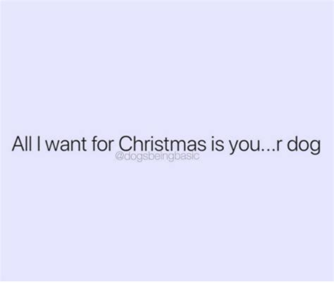 All I Want For Christmas Is You Meme - all i want for christmas is your dog all i want for