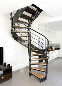 Escalier Moderne Pas Cher : dh109 spir 39 d co flamme mixte escalier d 39 int rieur ~ Premium-room.com Idées de Décoration