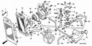 32 Honda Vtx 1800 Parts Diagram