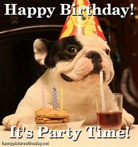 Happy Birthday Funny Pictures : Let's Celebrate!