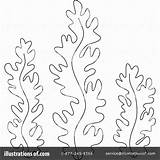 Seaweed Coloring Pages Weed Algae Sea Clipart Drawing Template Ocean Illustration Printable Crafts Awesome Birijus Plants Printables Bannykh Alex Royalty sketch template