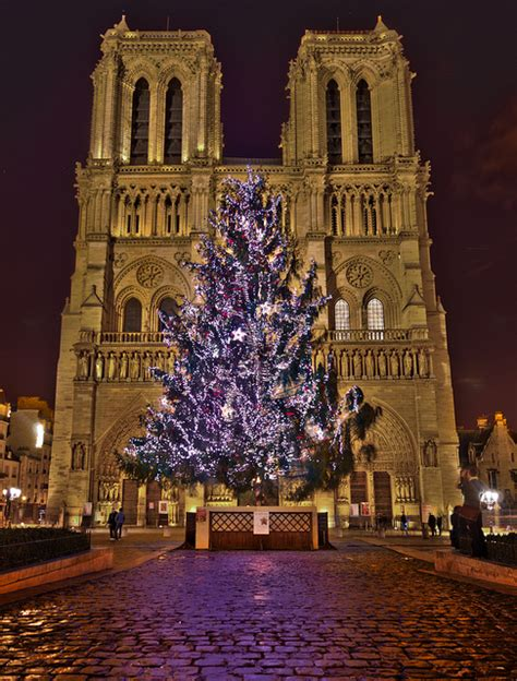 paris christmas dame notre tree france french merry joyeux trees lights grotto cathedral flickr xmas noel collect cafe later university