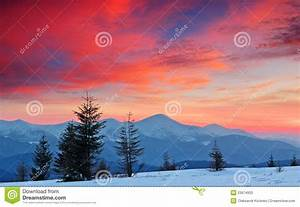 Winter Landscape At Sunset Stock Photos - Image: 23674933