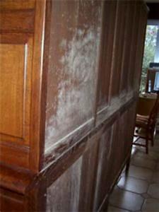 Nettoyer Mur Exterieur Bicarbonate : nettoyer moisissure meuble bois conception carte ~ Melissatoandfro.com Idées de Décoration