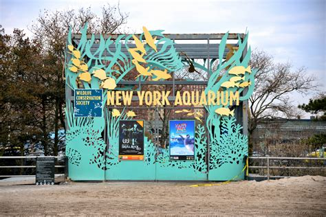 otworzą new york aquarium na coney island