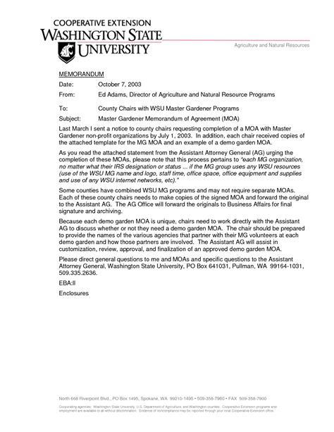 motivational letter  college application  business