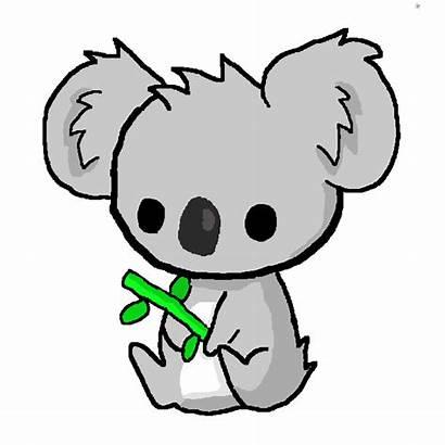 Koala Kawaii Transparent Pixilart