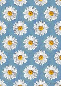 """Daisy Blues - Daisy Pattern on Cornflower Blue"" by ..."