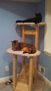 Build Simple Cat Tree DIY cedar mailbox plans
