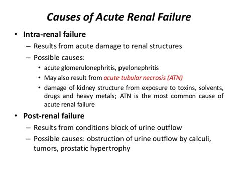 Most Common Cause of Acute Renal Failure