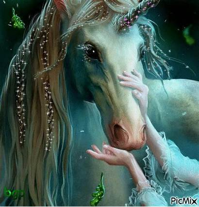 Unicorn Creatures Magical Fantasy Mystical Unicorns Fairies