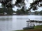 Life at Lake Murvaul Texas - YouTube