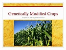 PPT - Genetically Modified Crops PowerPoint Presentation ...