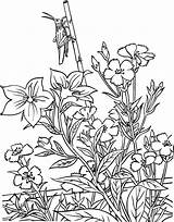 Coloring Gardening Pages sketch template