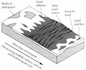 Shallow Marine Environments Of Terrigenous Clastic