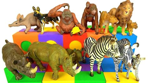 zoo animals schleich wild animal learning names learn toys fire volcano