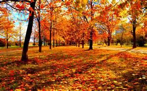 Seasons Autumn Fall Landscape