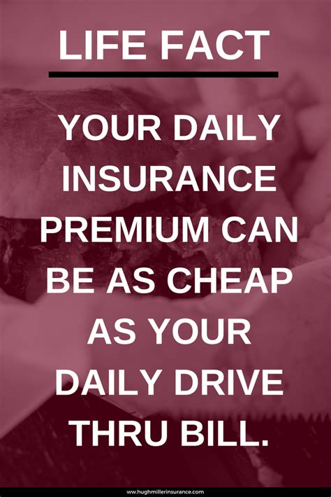 best insurance quotes choose insurance and learn why you need it at