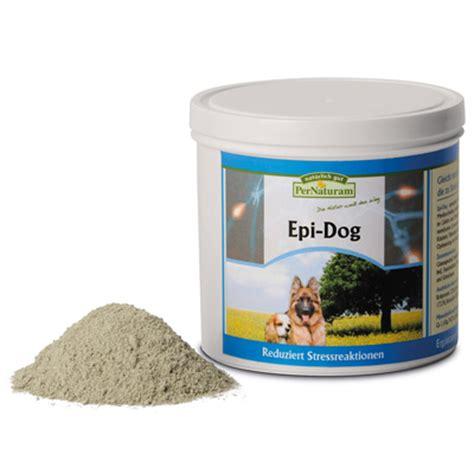 epi dog hunde epilepsie pernaturam dogsfriendsde