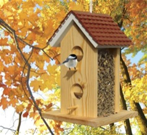 bird houses feeders woodworking plans