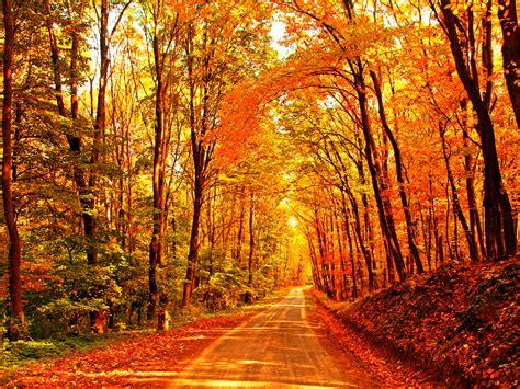 Autumn Equinox (September) - Avani Yoga Academy