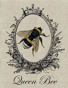 QUEEN BEE - Vintage Bumblebee Fabric Transfer Download ...