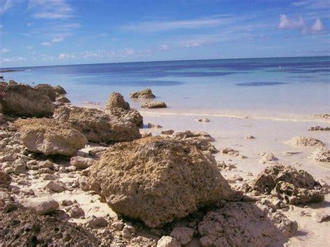 freeport    freeport bahamas tourism tripadvisor