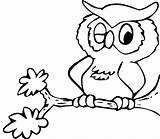 Coloring Owl Pages Printable sketch template