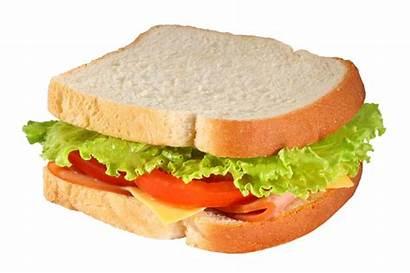 Sandwich Transparent Sandwiches Simple Background Bologna Dreamstime